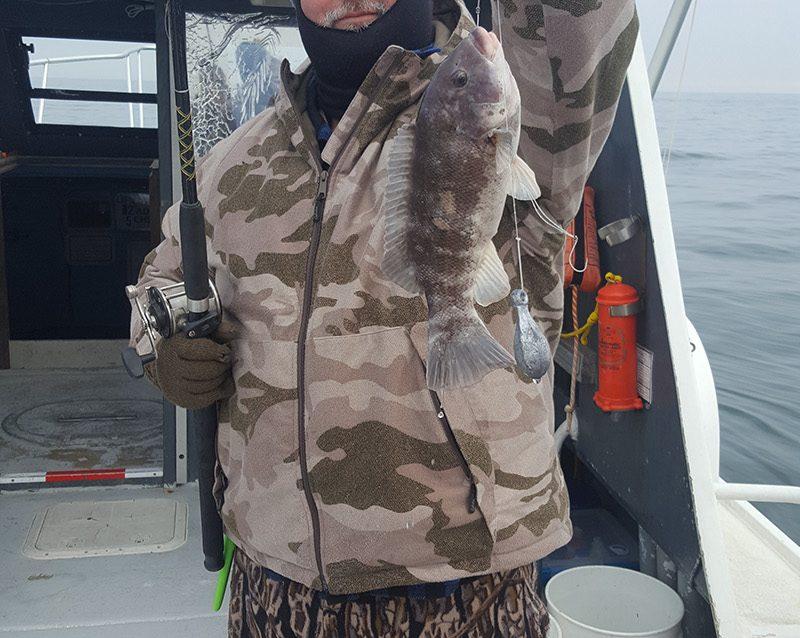 Dec 16th 2016 wreck fishing twrecks charters for Atlantic city fishing