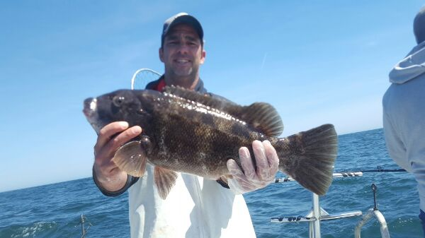 April 11, 2017 Open Boat Dual Anchor Wreckfishing for Tautog, Blackfish on Twrecks Atlantic City